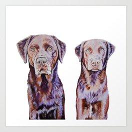 Mocha Chino the Labradors Art Print
