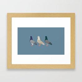 New York Normal: Pigeons. Framed Art Print
