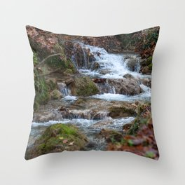 Forest river 2 Throw Pillow