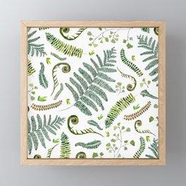 Spring Fern Framed Mini Art Print