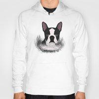 boston Hoodies featuring Boston terrier by Nir P