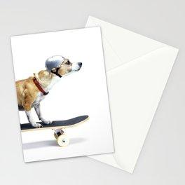 Skate Punk - Skateboarding Chihuahua Dog inTiny Helmet Stationery Cards