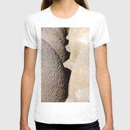 Formes en français T-shirt