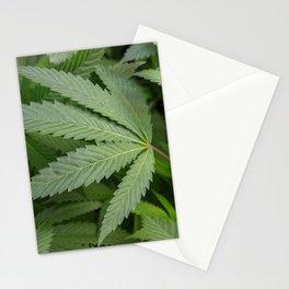 Pot Leaf on a Plant Stationery Cards