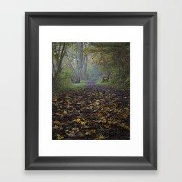 autumn path Framed Art Print