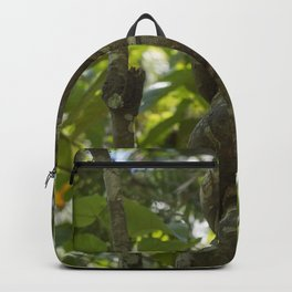 Rooted Vine Backpack