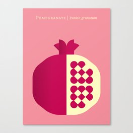 Fruit: Pomegranate Canvas Print