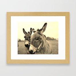 Donkey Love Framed Art Print
