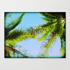 Palm Trees Tropical Photography Canvas Print