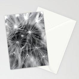 Dandelion Close-Up Stationery Cards