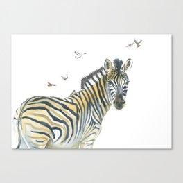 Zebra and Birds Canvas Print