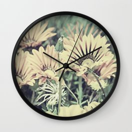 Desert Daisies - Daisy Project in memory of Mackenzie Wall Clock