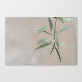 Finding Quiet Canvas Print