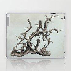 Spirits of the Driftwood Laptop & iPad Skin