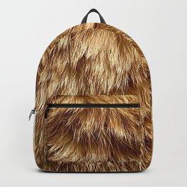 Harvard The Cat Backpack
