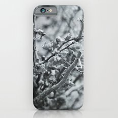 Silver Flower Winter iPhone 6s Slim Case