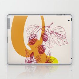 Q Laptop & iPad Skin