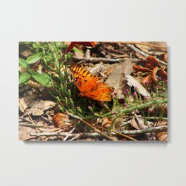 The Painted Lady Butterfly Metal Print