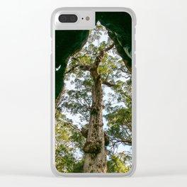 Giant Tingle Tree, Denmark, Western Australia Clear iPhone Case