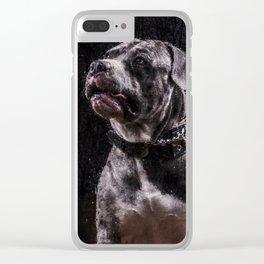 XXIX Clear iPhone Case