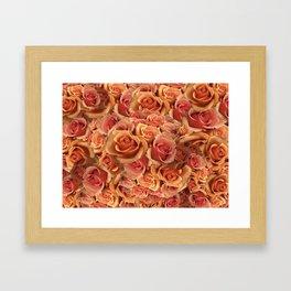 Roman Grenadier Roses Framed Art Print
