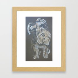 Inquisitive Schnauzer Framed Art Print