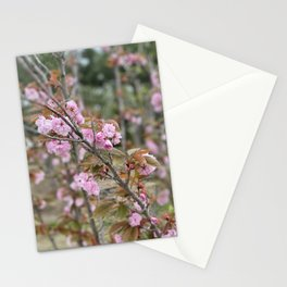 Paradies Is Nice Stationery Cards