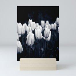 White Tulips In Cool Light Mini Art Print