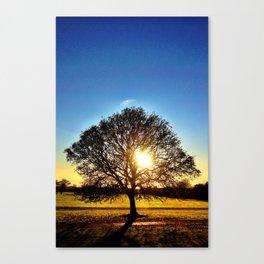 Tree of Life - Malahide Park Canvas Print
