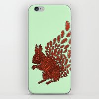 squirrel iPhone & iPod Skins featuring Squirrel by Julia Kisselmann