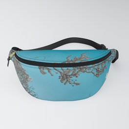 Turquoise Winter Wanderlust - Forest Sky Nature Photography Fanny Pack