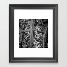autumn structure II Framed Art Print