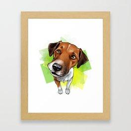 Jack Russel Framed Art Print