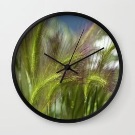 Ripened cheatgrass in green and pink Wall Clock