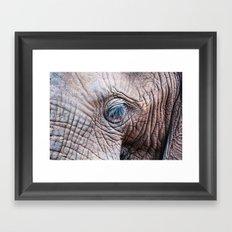 The Elephant Sanctuary 02 Framed Art Print