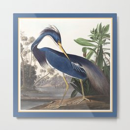 Louisiana Heron Bird Blue Yellow Painting Metal Print