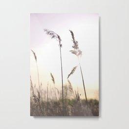 Cane Metal Print