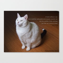 Cat with Mark Twain quote Canvas Print