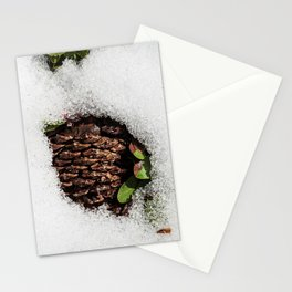 Winter Pine Cone. Sand Harbor. Lake Tahoe. USA Stationery Cards