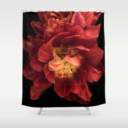 Floral Photography | Red Flower | Plant | Nature Shower Curtain