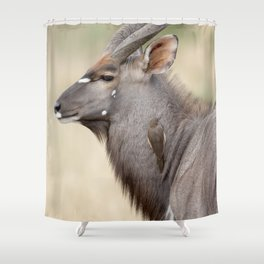 Nyala with Oxpecker Shower Curtain