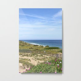 Seaside Dunes Metal Print