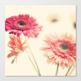 Sweet Side  (retro flower photography) Canvas Print