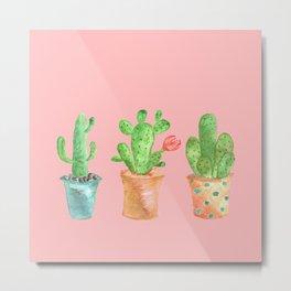 Three Green Cacti On Pink Background Metal Print