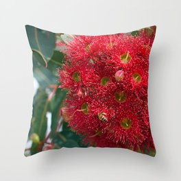 Red Flowering Gum Blossoms Throw Pillow