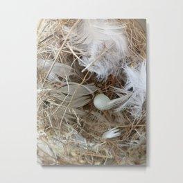 Empty nest Metal Print