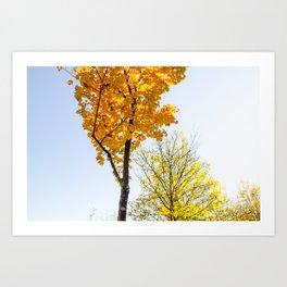 Autumn Feels Art Print