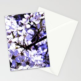 A View Of Spring Blossoms Stationery Cards