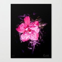 Tanto Amor (I) Canvas Print