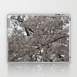 Tidal Basin Blossoms Laptop & iPad Skin